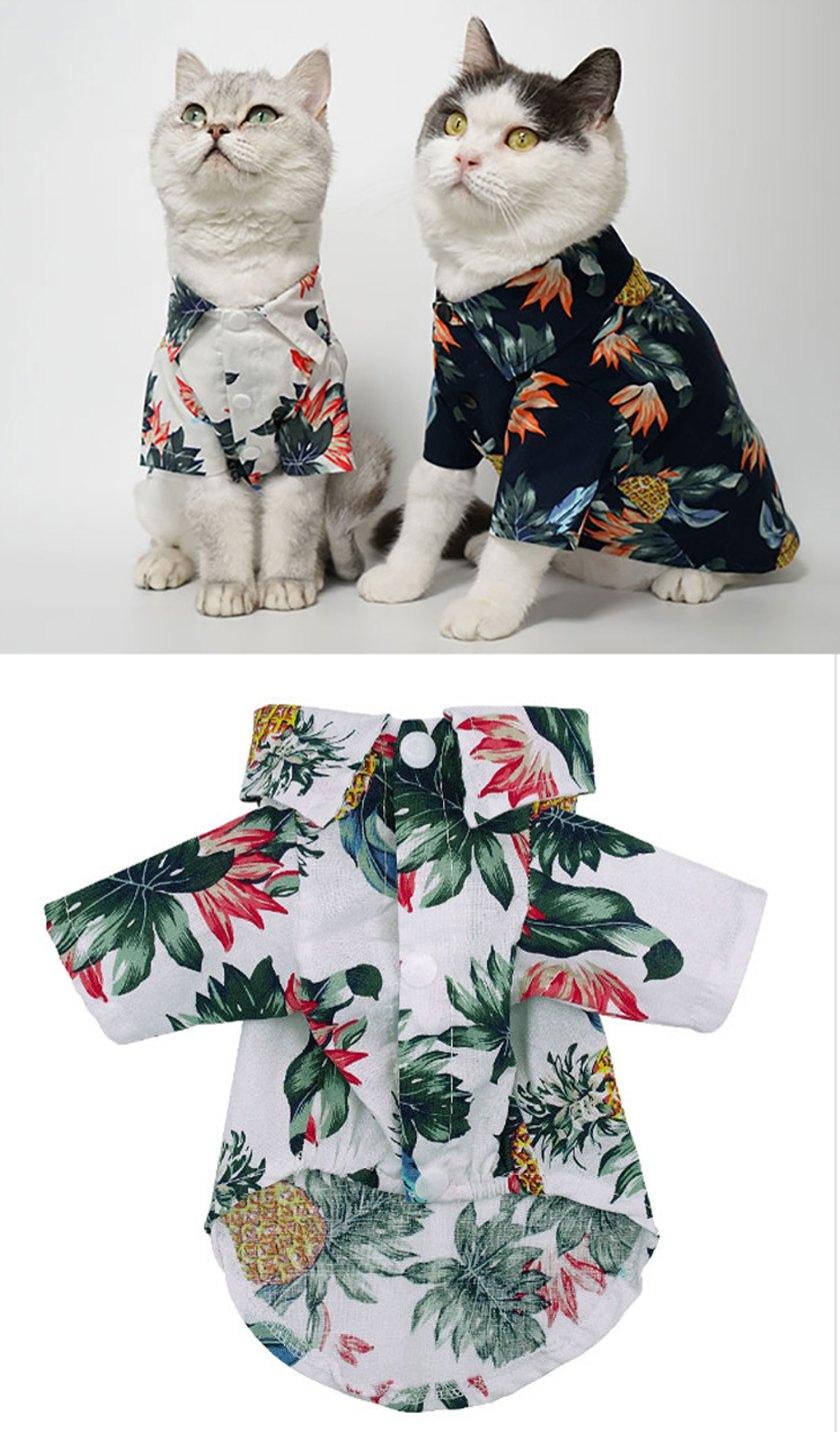 cute cat costume for sale