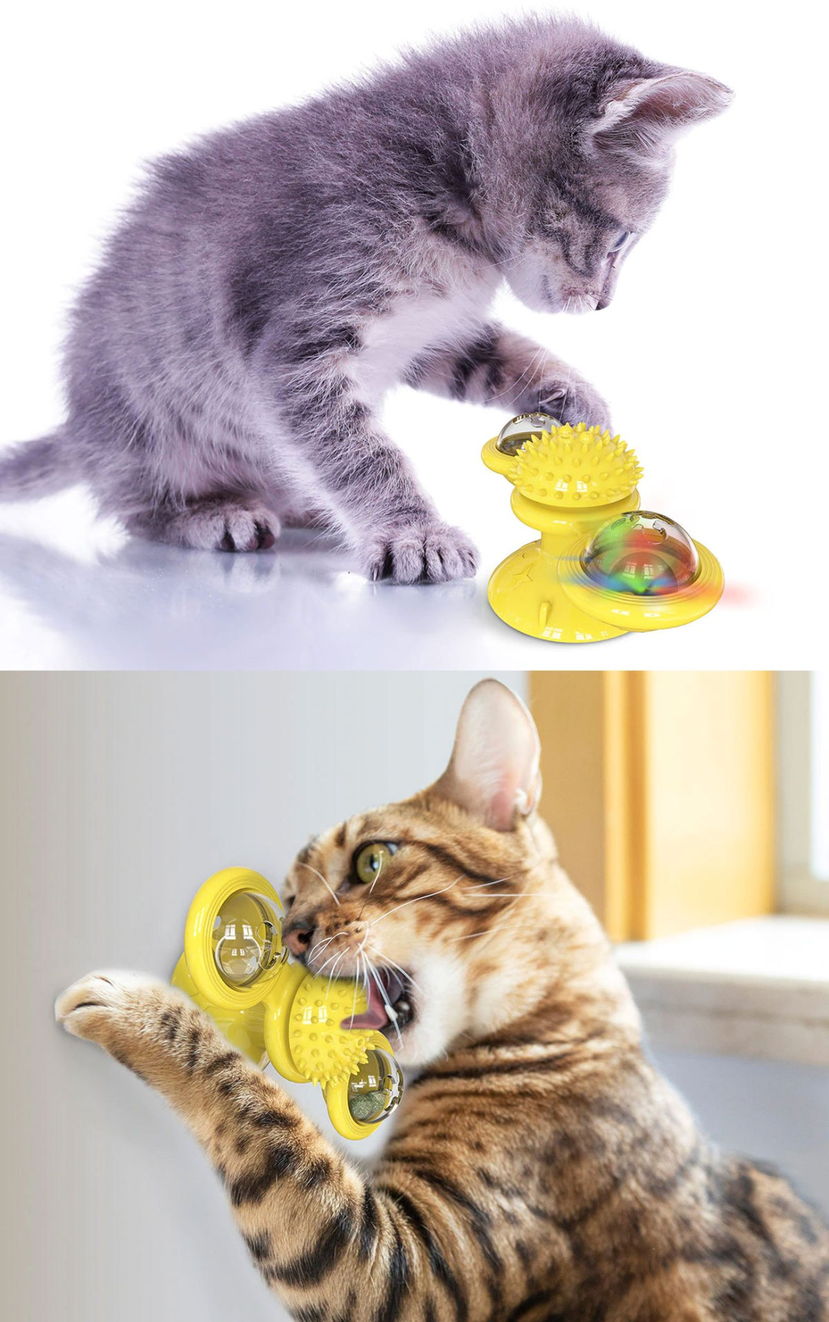 cutest cat toys