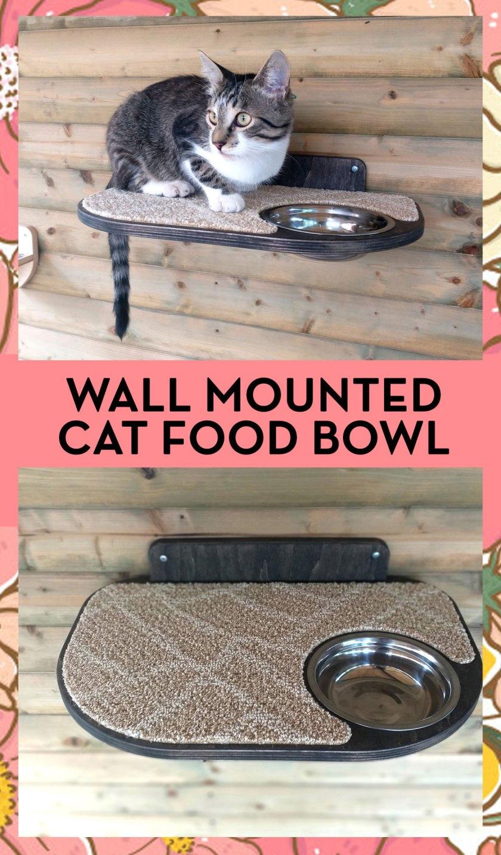 necoichi raised cat food bowlnecoichi raised cat food bowl
