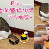 【寵物用品推薦】貓奴必備!讓喵星人在家也不無聊的好夥伴!《Ebo 智能寵物伴侶-迷你機器人》|遠端手機APP操控| |寵物攝影機|