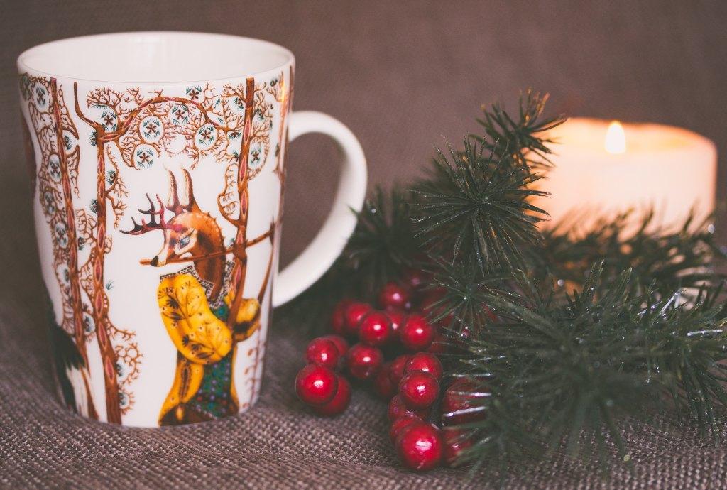 conseils astuces soigner déprime coups de mou fatigue hiver automne hivernal automnal lithothérapie aromathérapie pierres huiles essentielles phytothérapie plantes