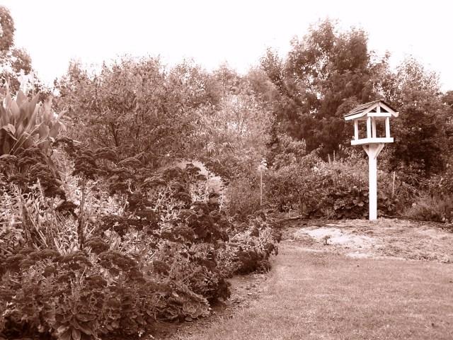 Lush Bundanoon Gardens and Public Parkland: f/2.8; 1/180sec
