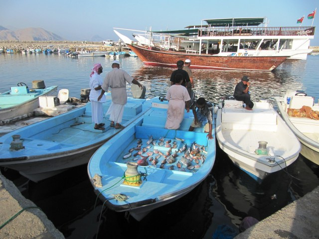 Musandam, Oman: f/4; 1/1000sec; ISO-160