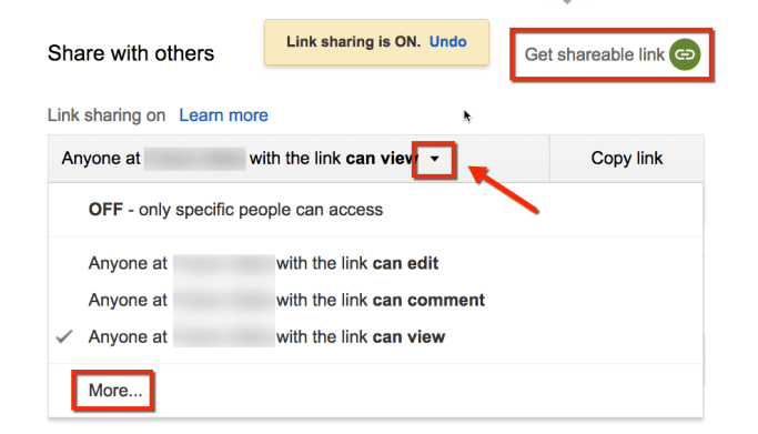 Give generic access to the Google Doc