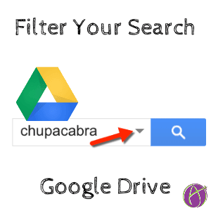 Google Drive filter your search