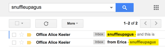 search both the subject line and email text