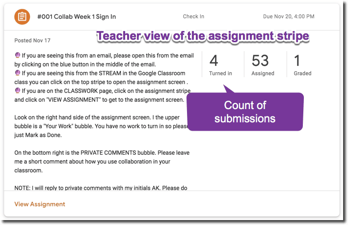 Teacher view of the assignment stripe