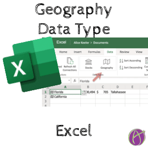 Geography Data Type Excel