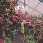 Wolf Alice Giant Peach cover