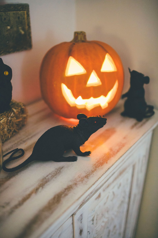 Cute Spooky Halloween Vignette