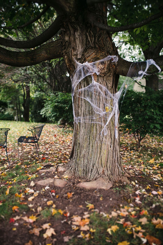 Halloween-Cobweb-Tree-Front-Yard