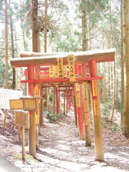 Torii; Shikoku, Japan; 2006
