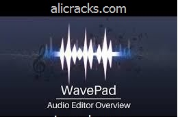 WavePad Sound Editor 8.03 Crack Plus Serial Key Download