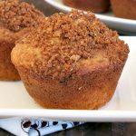 Cinnamon Oatmeal Muffins