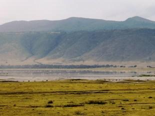 Flamingoes in the Ngorogoro Crater, Tanzania