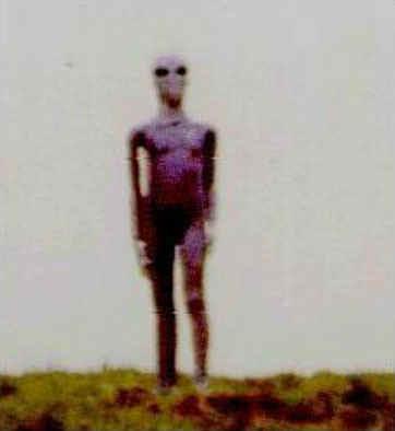 https://i2.wp.com/alien-ufo-research.com/images/alien/alien_on_hill.jpg
