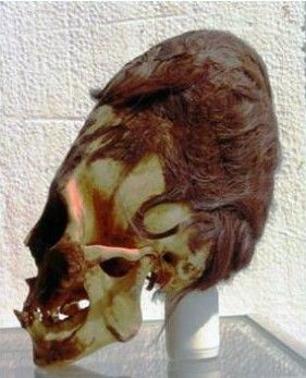 paracas_skull_with_hair-compressor