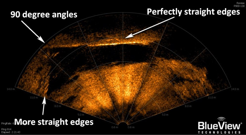 One of the many sonar images which defy explanation due to the unnaturally geometric construction.