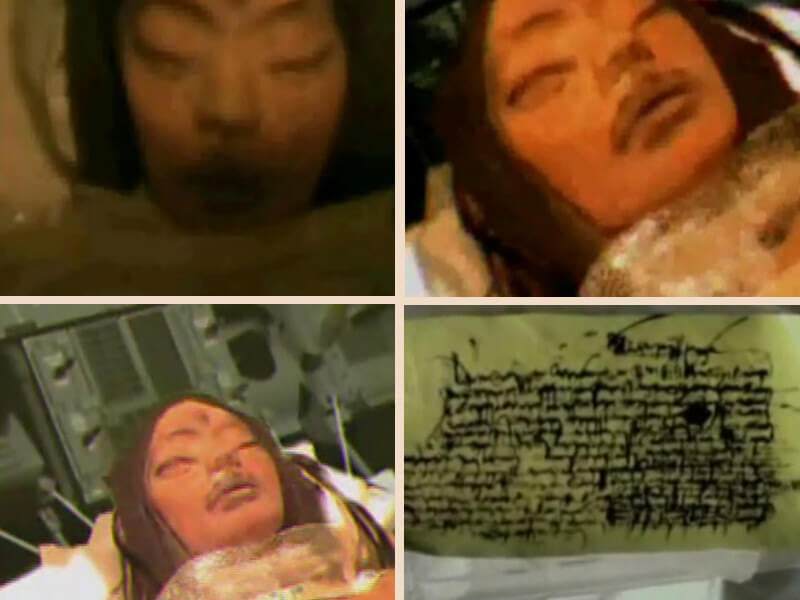 Image result for Mona Lisa, the Alien Girl Apollo 20 Found on the Moon