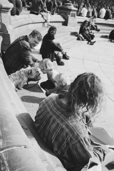Cuteness is photogenic_Washington Square Park