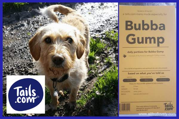 Bubba Gump - feeding dogs in winter