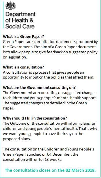 green paper for consultation