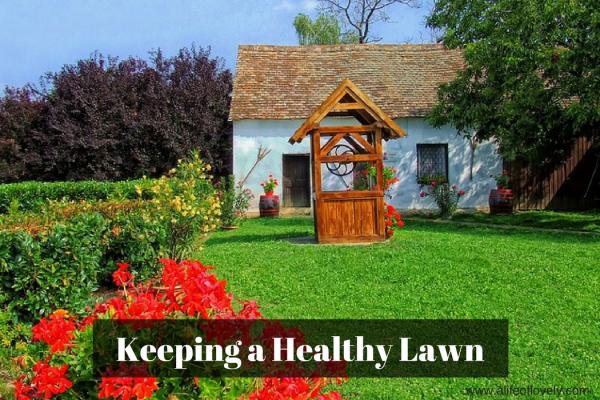 Keeping a Healthy Lawn