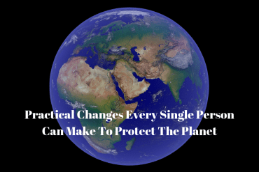 Practical Changes Every Single Person Can Make To Protect The Planet