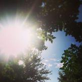 135. Hello sunshine
