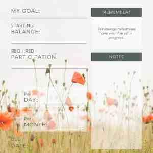 poppy field financial planner