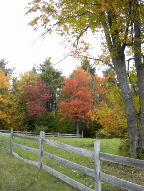 New Hampshire Fence by Christine Lofgren