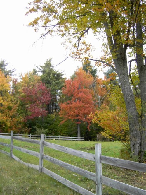 New Hampshire Fence by Christine Lofgren
