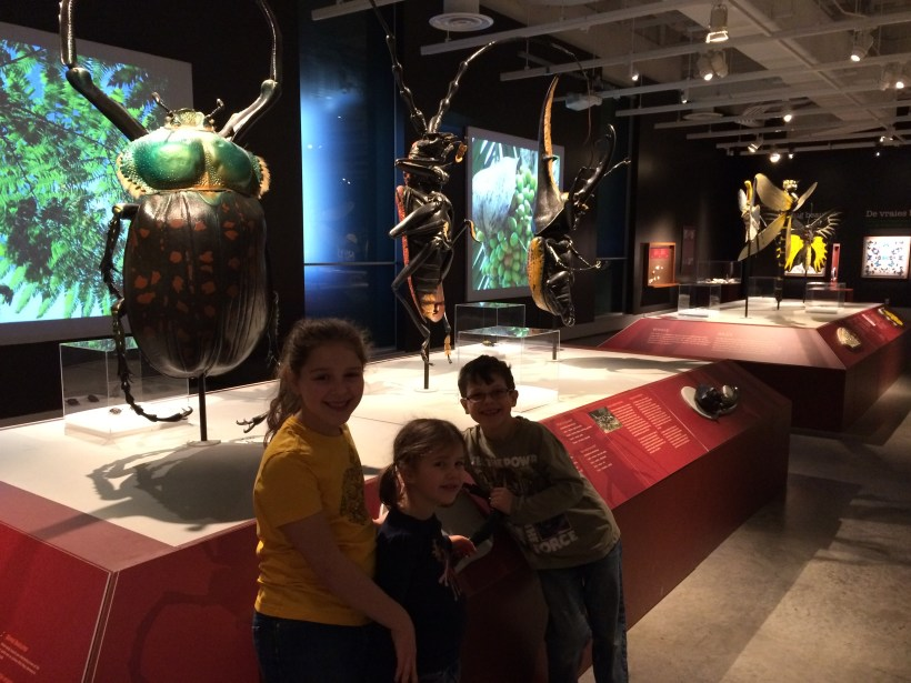 museum of nature ottawa