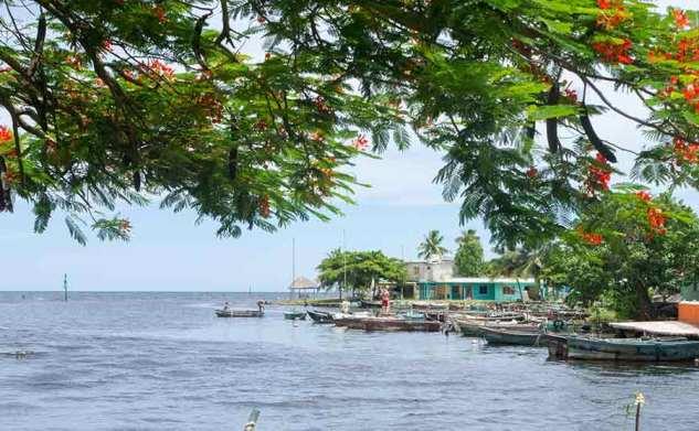 Cuba #6 Playa Larga