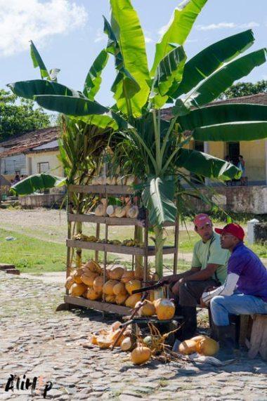 trinidad-cuba-valle-ingenios-coco-alihop