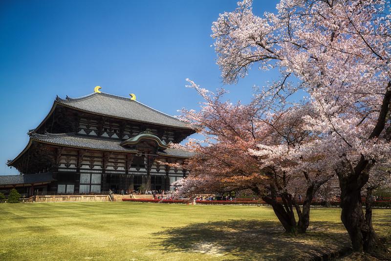 Photography Of Todai-Ji Temple of Nara Japan