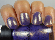 Are Mermaids Real?- 2 Coats
