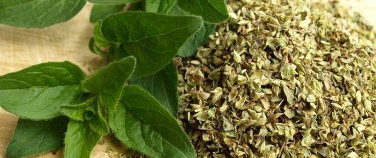 hierbas aromáticas y especias como el orégano