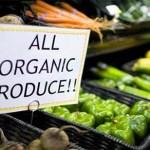 Increíble, Dinamarca se convierte en el primer país del mundo 100% orgánico