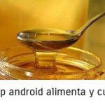 Lo que no sabes sobre la miel- INTERESANTE!!