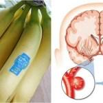 Esto es lo que le pasa al cerebro, el corazón, y la cintura cuando se come 3 plátano al día.