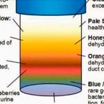 Lo que el color de la orina revela acerca de tu salud