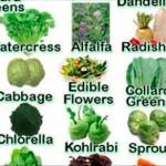 ¡60 alimentos alcalinos que luchan contra el cáncer, la inflamación, la diabetes y las enfermedades del corazón!