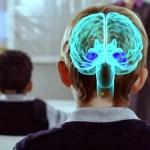 La Ciencia Demuestra Que El Elemento Esencial En El Aprendizaje De Una Persona Es La Emoción