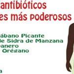 Los 10 más potentes antibióticos naturales conocidos por la humanidad