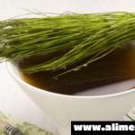 Esta planta es conocida por ser una valiosa regeneradora de tejidos, entérate todo lo que puede hacer por tu salud!!