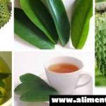 Forma correcta de preparar el té de hojas de guanábana para matar las células del cáncer, controlar el asma y la diabetes, calmar los nervios e inducir al sueño y mas…