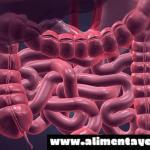 Limpia tu intestino de manera natural con estos consejos