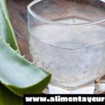 ¿Qué beneficios obtenemos al ingerir el Aloe Vera?