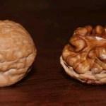 """""""Las nueces son drogas"""", dice la FDA"""